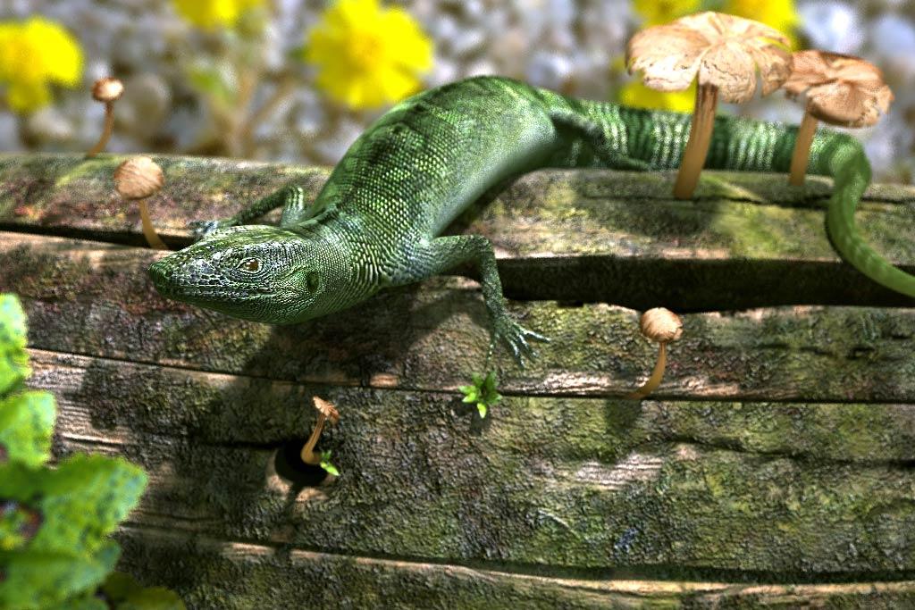 """3d-lizard 3D Character """"Eidechse"""""""