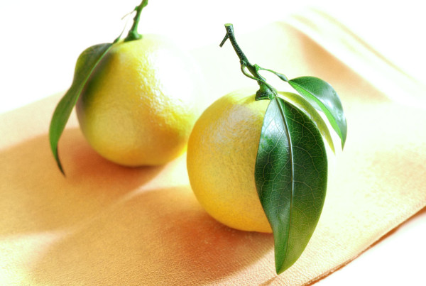 lemons_3d-600x403 3D Computergrafik und Design Projekte