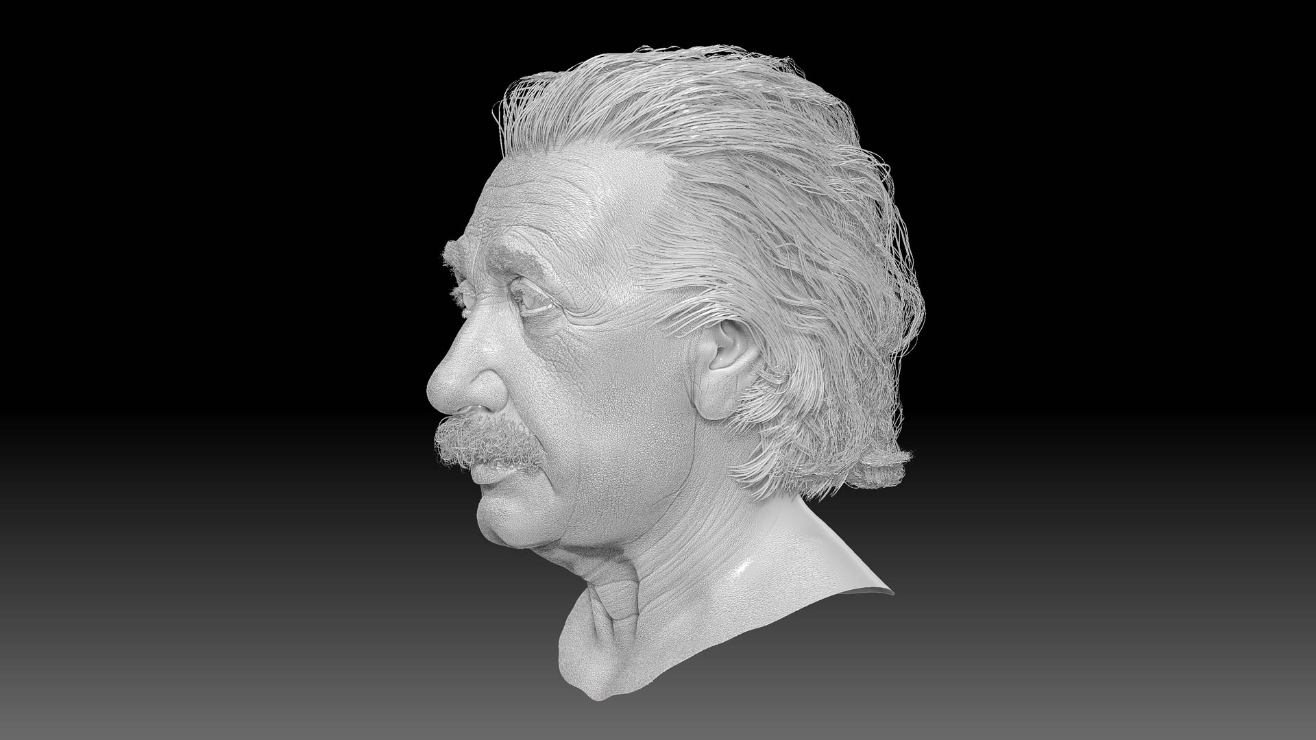 albert_einstein_zbrush_sculpting_model_head_character_site_view_wacom_wrincles Albert Einstein 3D Porträt für ein Hologram