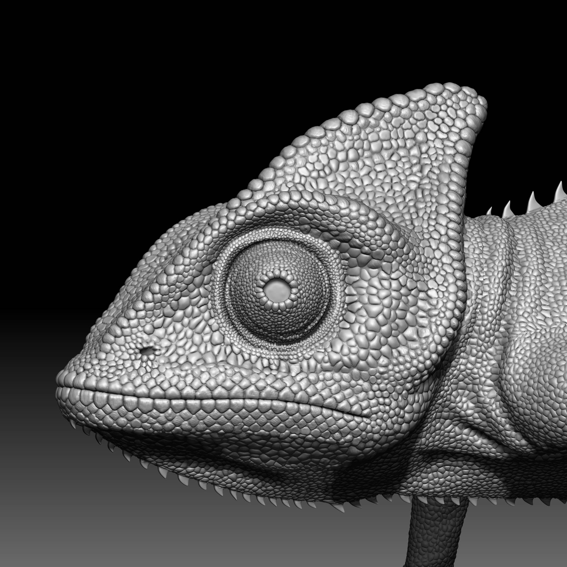 Chameleon_animal_head_zbrush-sculpt Chameleon - Animation / TRACKING and MATCHMOVING / VFX